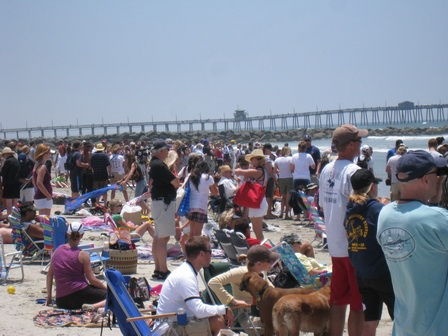 The crowd at Imperial Beach