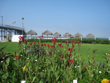 Flowers at Rosarito Beach Hotel